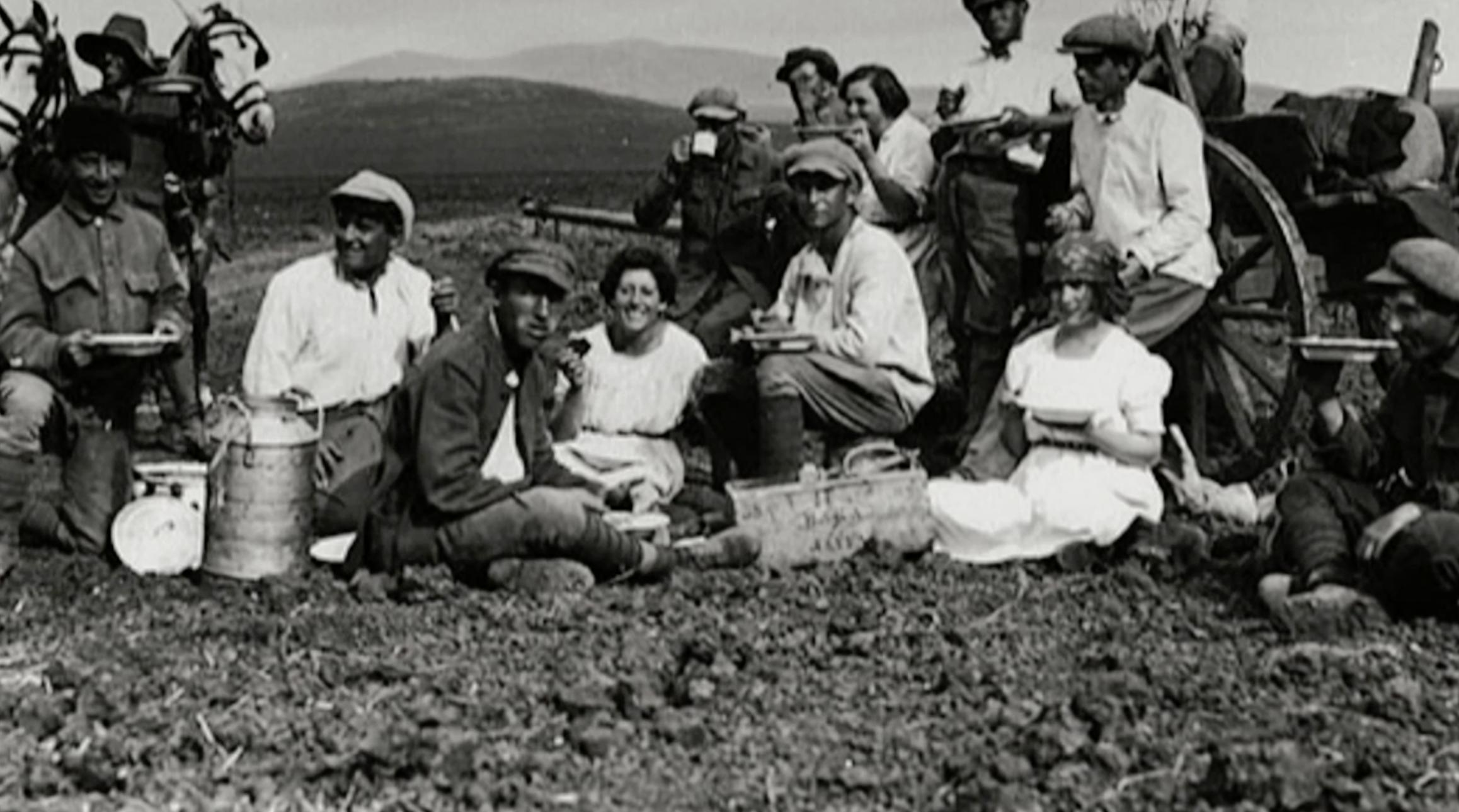 Kibbutznik Picnic
